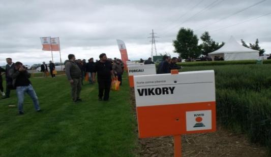 Fotoreportaža: Dani polja KWS-a u Osijeku