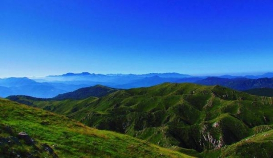 Salers uskoro u Crnoj Gori i Makedoniji