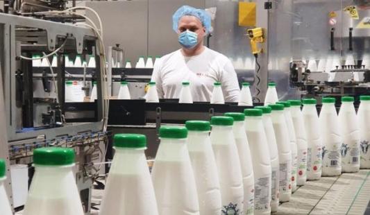 Tomislav Radišić - proizvodi Kraljica kravica 100 posto hrvatski